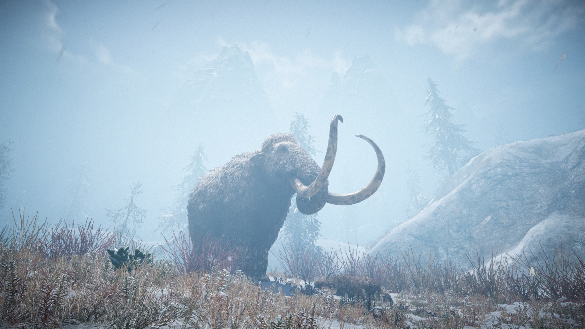 FCPrimal 2016-03-09 14-34-45-99 mammoth snow